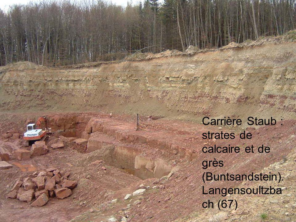 Carrière Staub : strates de calcaire et de grès (Buntsandstein). Langensoultzba ch (67)