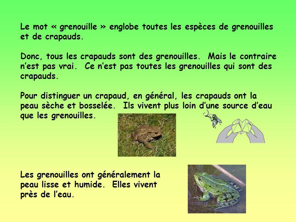 Jai une petite question pour toi: Quelle est la différence entre une grenouille et un crapaud