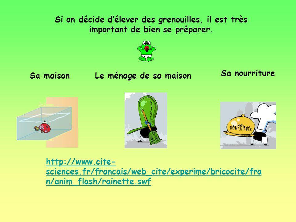 Une grenouille peut vivre de 2 à 40 ans.
