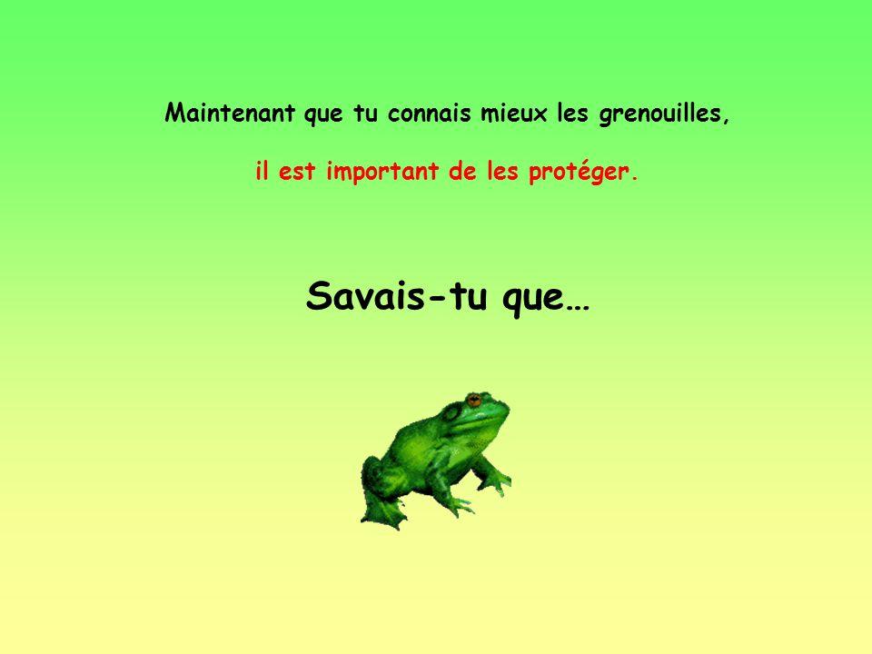 De l'oeuf à la grenouille http://formation.paris.iufm.fr/archiv_05/ cornuaul/Sites/text/biologie.htm Trouve la bonne image correspondant à lœuf dune g