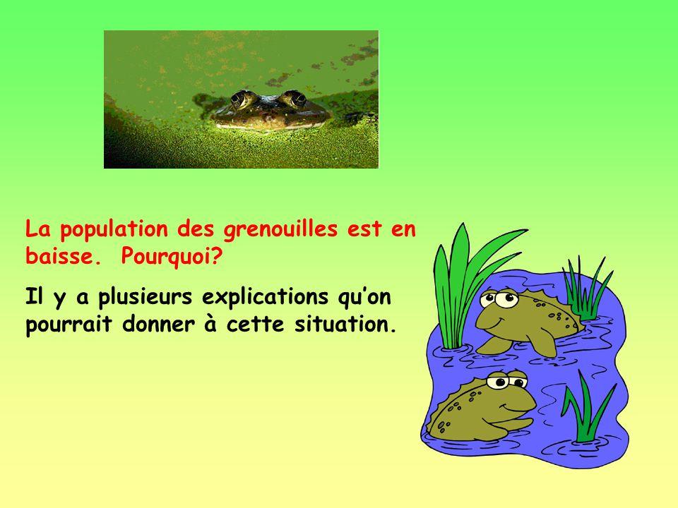 Maintenant que tu connais mieux les grenouilles, il est important de les protéger. Savais-tu que…