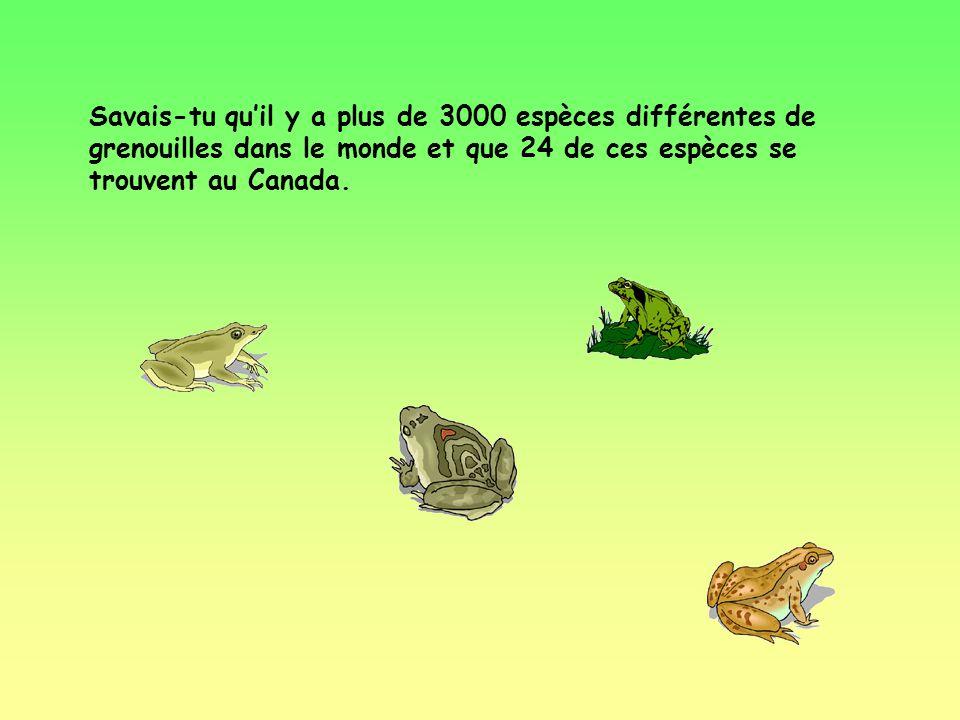Quest-ce que tu connais sur les grenouilles?