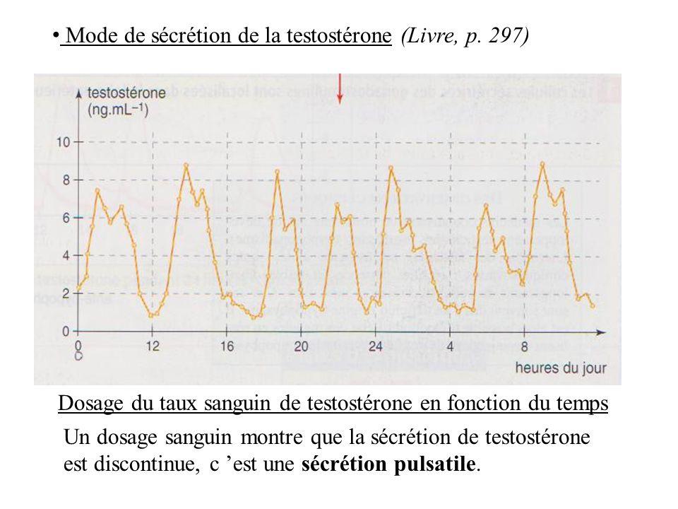 Dosage du taux sanguin de testostérone en fonction du temps Mode de sécrétion de la testostérone (Livre, p.