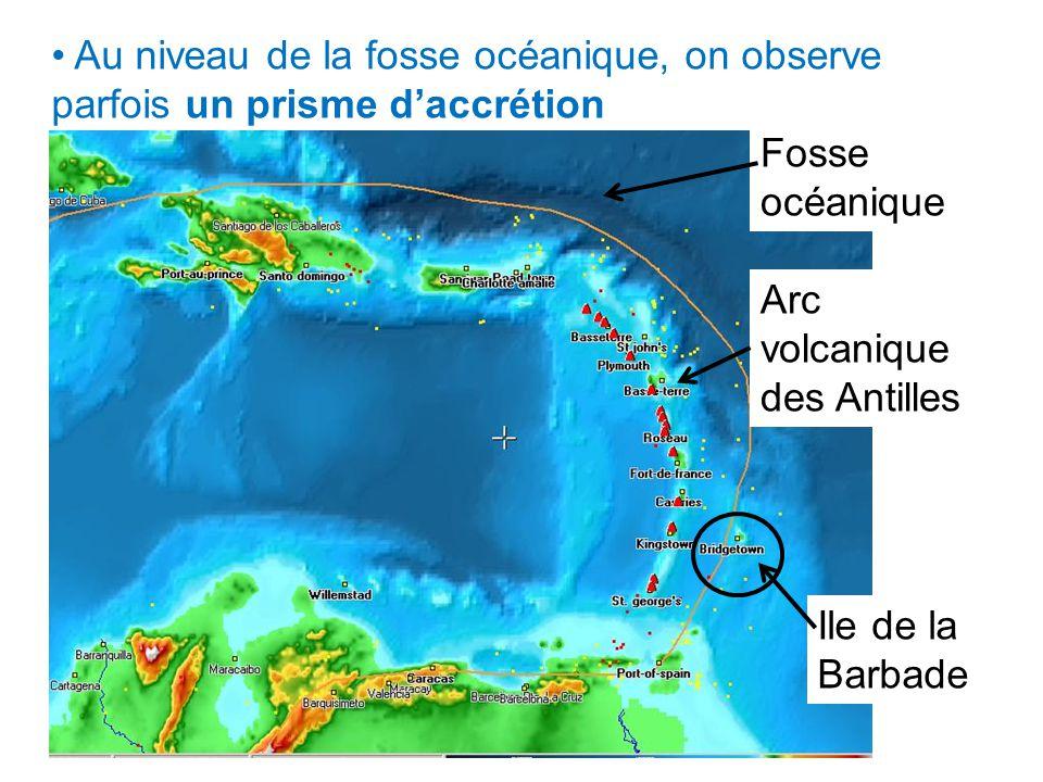 Au niveau de la fosse océanique, on observe parfois un prisme daccrétion Arc volcanique des Antilles Ile de la Barbade Fosse océanique