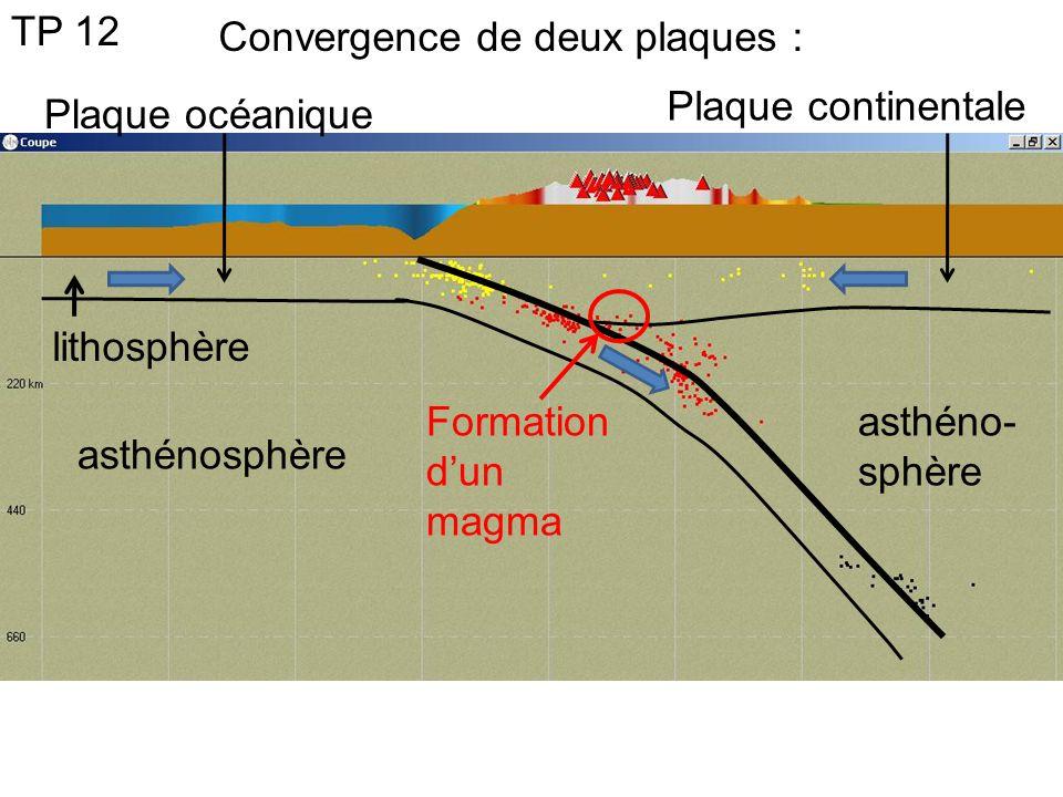 asthénosphère asthéno- sphère TP 12 Plaque océanique Plaque continentale Convergence de deux plaques : lithosphère Formation dun magma