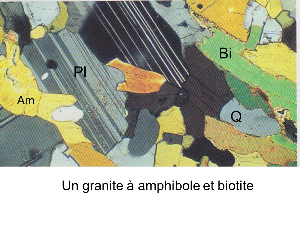 Un granite à amphibole et biotite Bi Pl Q Am