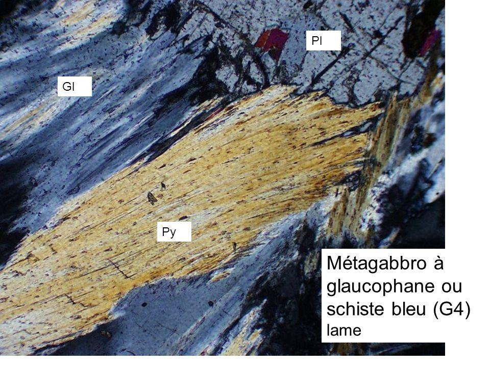 Py Gl Pl Métagabbro à glaucophane ou schiste bleu (G4) lame