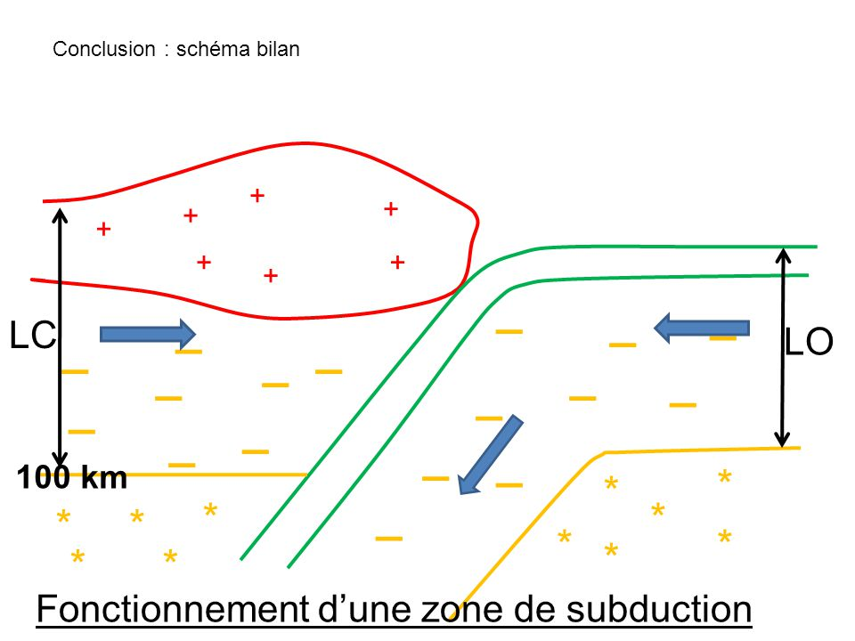 + + + + + + + _ _ _ _ _ _ _ _ _ _ _ _ _ _ _ _ _ * * ** * * * * ** * LO LC 100 km Fonctionnement dune zone de subduction Conclusion : schéma bilan