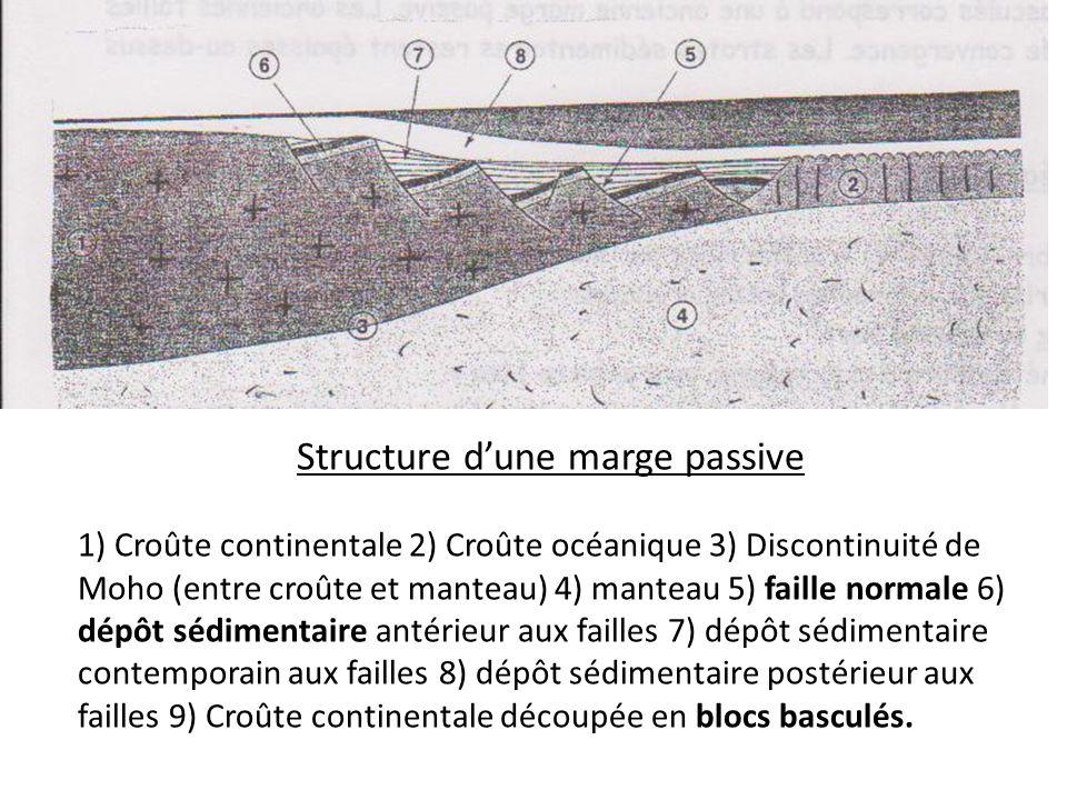 Structure dune marge passive 1) Croûte continentale 2) Croûte océanique 3) Discontinuité de Moho (entre croûte et manteau) 4) manteau 5) faille normal
