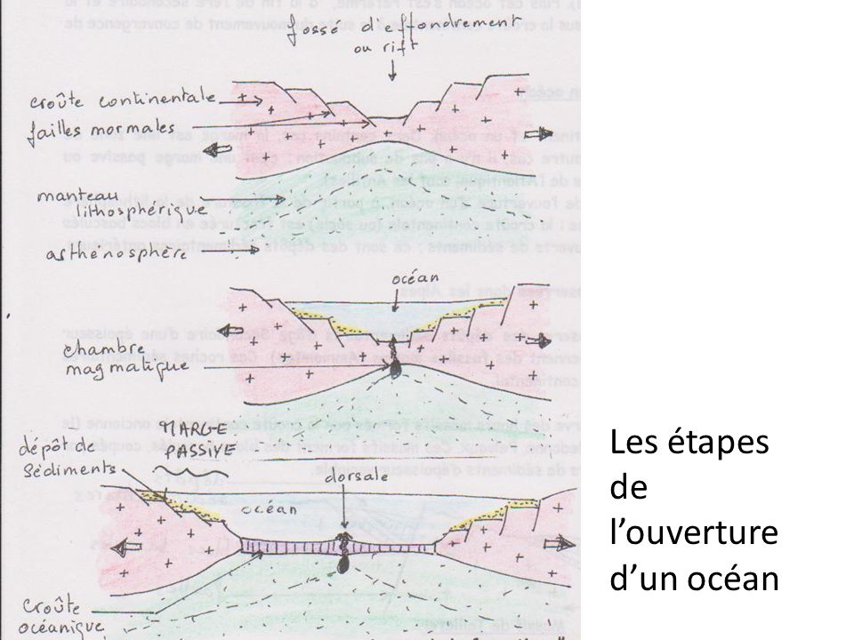 3) Un marqueur structural : la racine crustale