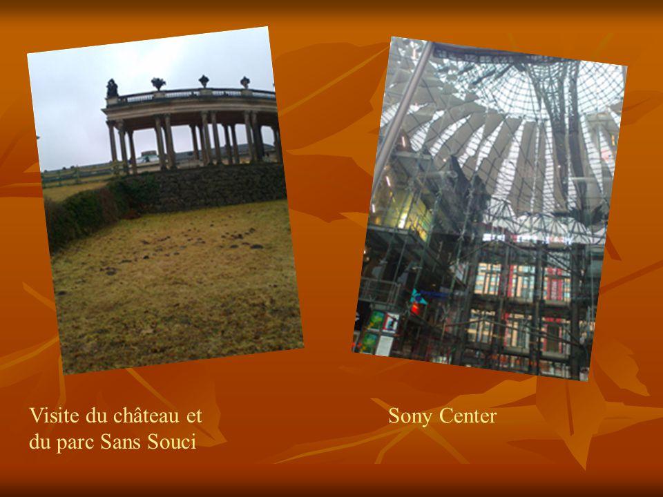 Visite du château et du parc Sans Souci Sony Center