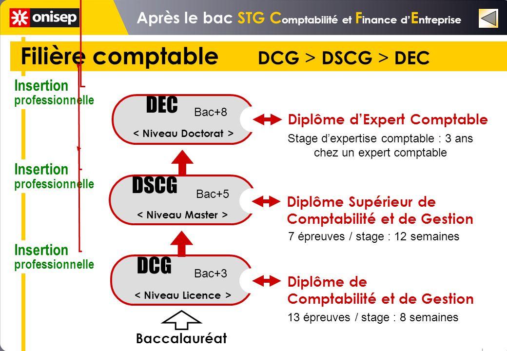 Filière comptable DCG > DSCG > DEC DSCG DEC Stage dexpertise comptable : 3 ans chez un expert comptable 7 épreuves / stage : 12 semaines DCG Diplôme d