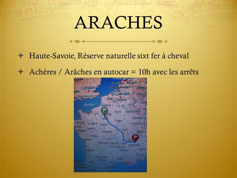 ARACHES Haute-Savoie, Réserve naturelle sixt fer à cheval Achères / Arâches en autocar = 10h avec les arrêts