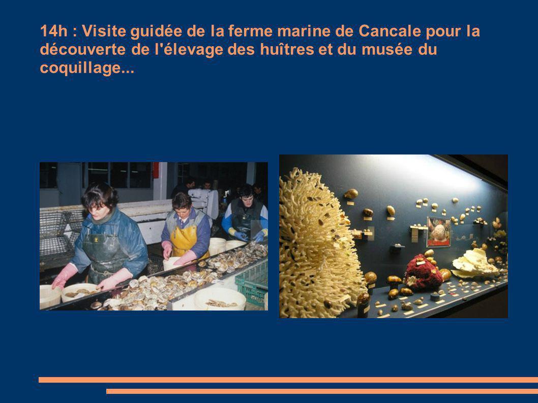 14h : Visite guidée de la ferme marine de Cancale pour la découverte de l élevage des huîtres et du musée du coquillage...