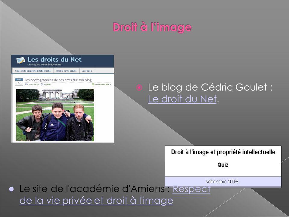 Le blog de Cédric Goulet : Le droit du Net.