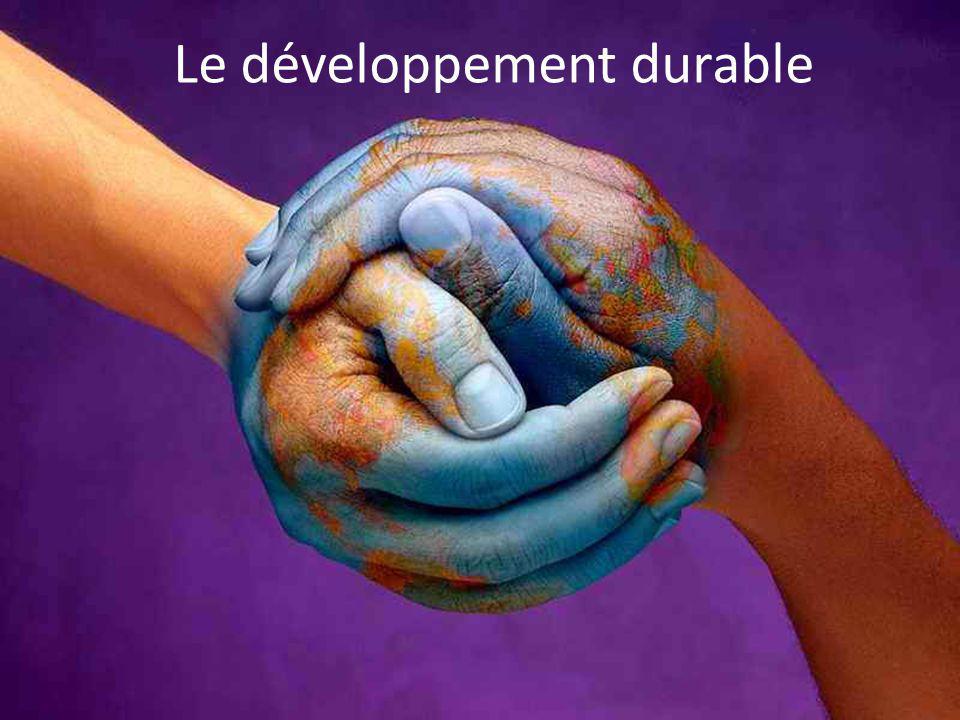 Les associations Chaque citoyen peut sengager dans différentes ONG comme : Défi pour la terre (fondation Nicolas Hulot) Association Good Planet Action contre la faim