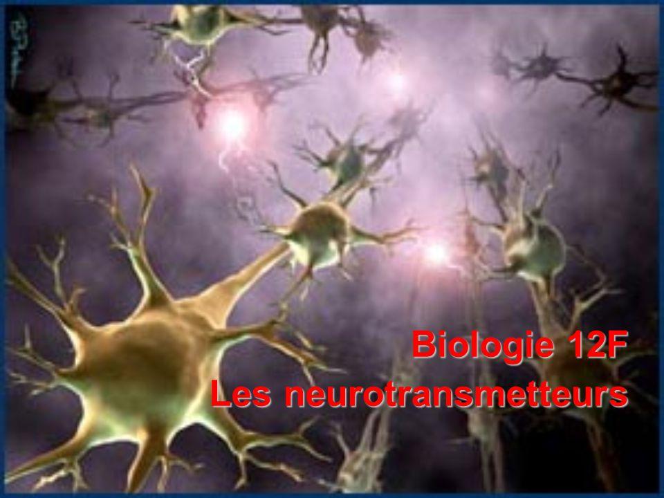 Biologie 12F Les neurotransmetteurs