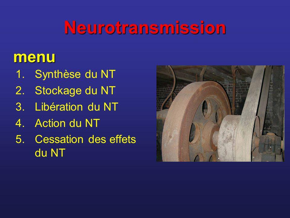 Neurotransmission 1.Synthèse du NT 2.Stockage du NT 3.Libération du NT 4.Action du NT 5.Cessation des effets du NT menu