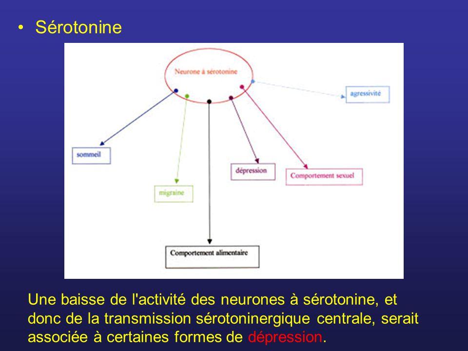 Sérotonine Une baisse de l'activité des neurones à sérotonine, et donc de la transmission sérotoninergique centrale, serait associée à certaines forme
