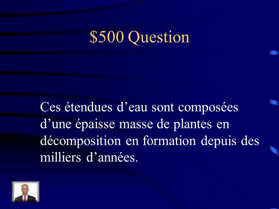 $400 réponse Les terres humides