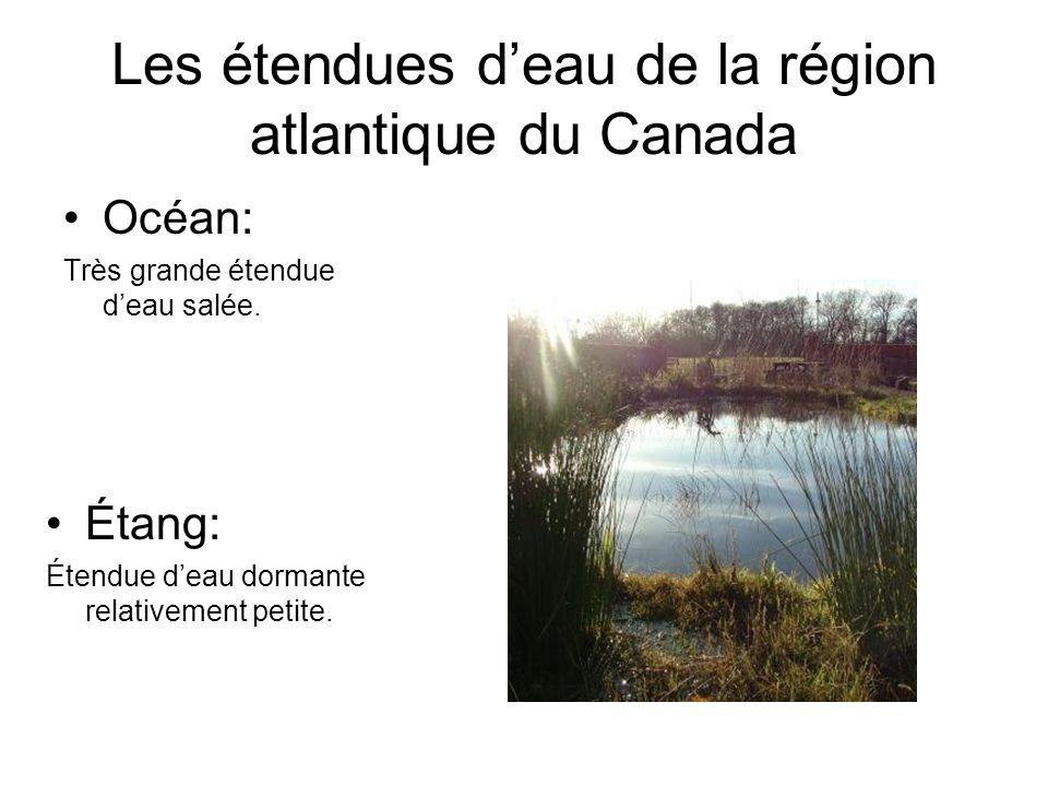 Les étendues deau de la région atlantique du Canada Océan: Très grande étendue deau salée. Étang: Étendue deau dormante relativement petite.