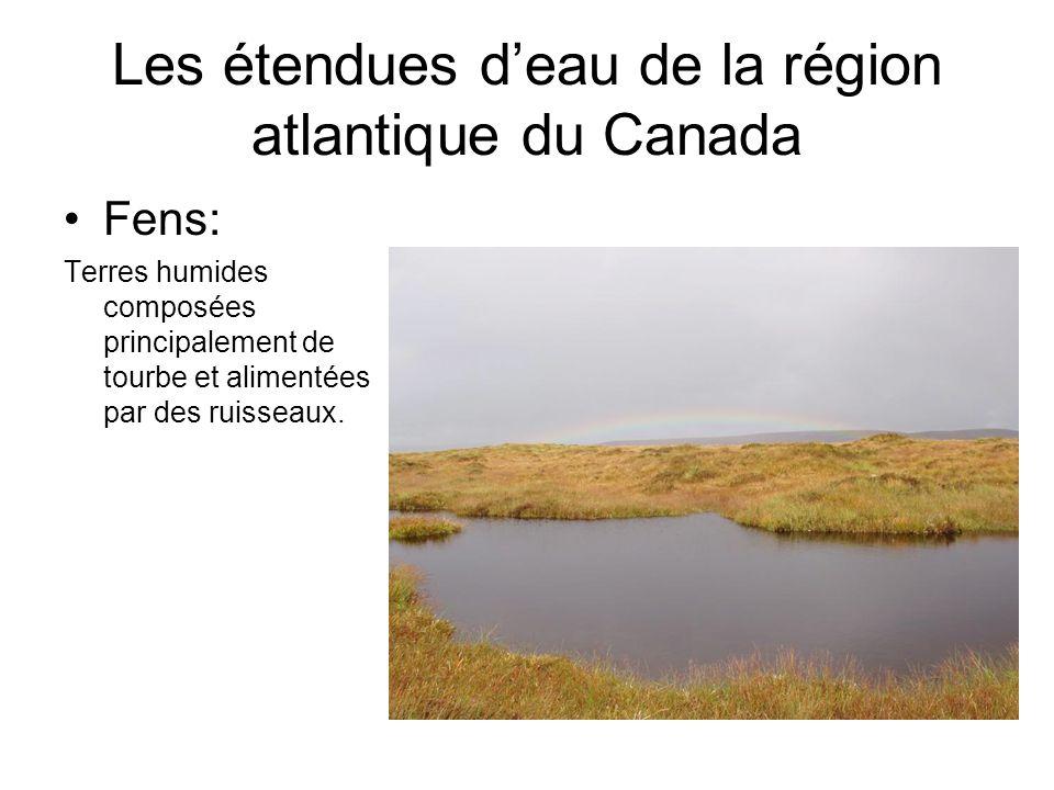 Les étendues deau de la région atlantique du Canada Fens: Terres humides composées principalement de tourbe et alimentées par des ruisseaux.