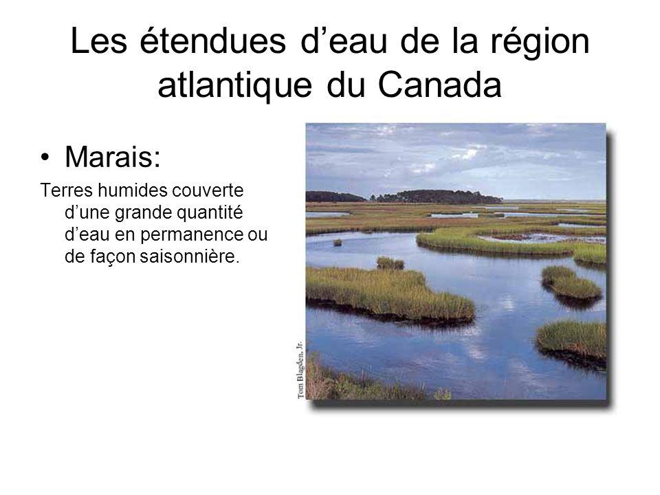 Les étendues deau de la région atlantique du Canada Marais: Terres humides couverte dune grande quantité deau en permanence ou de façon saisonnière.