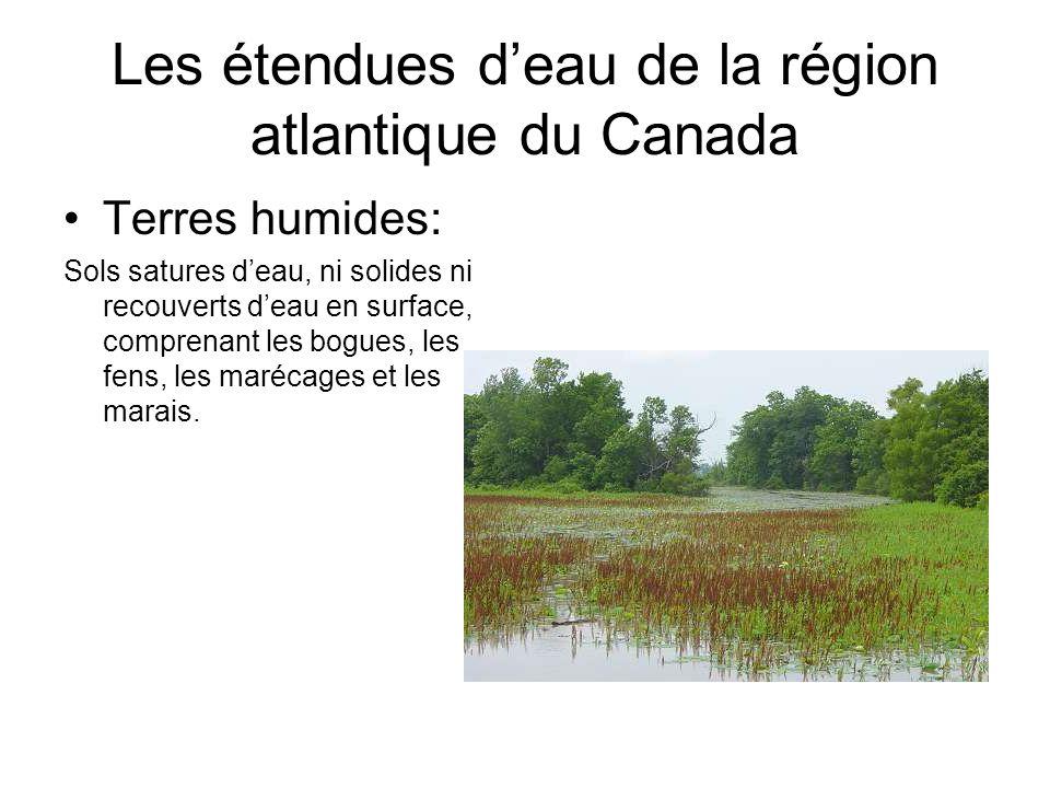 Les étendues deau de la région atlantique du Canada Terres humides: Sols satures deau, ni solides ni recouverts deau en surface, comprenant les bogues