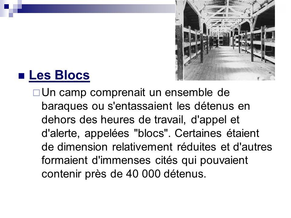 Les Blocs Un camp comprenait un ensemble de baraques ou s'entassaient les détenus en dehors des heures de travail, d'appel et d'alerte, appelées