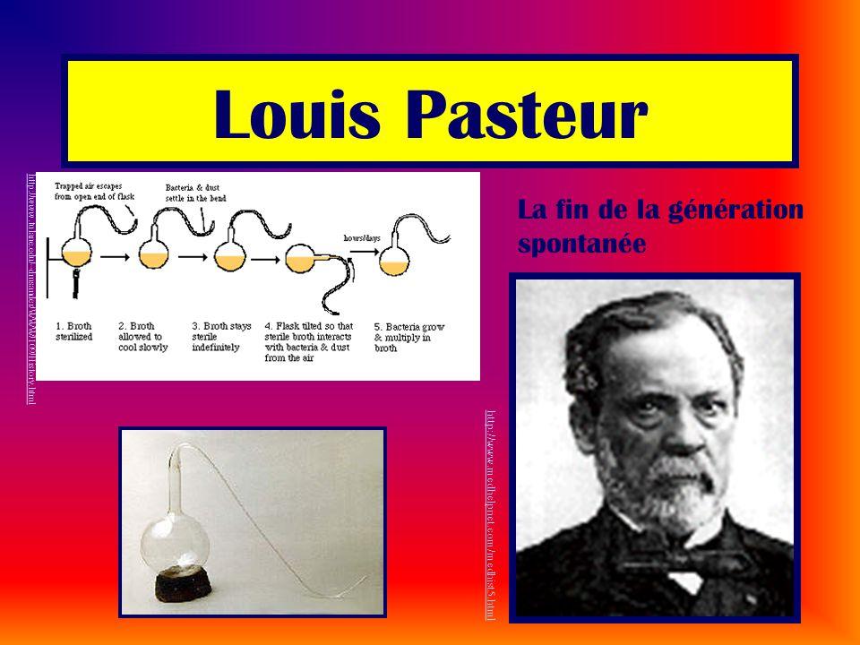 Louis Pasteur http://www.medhelpnet.com/medhist5.html http://www.tulane.edu/~dmsander/WWW/109/History.html La fin de la génération spontanée
