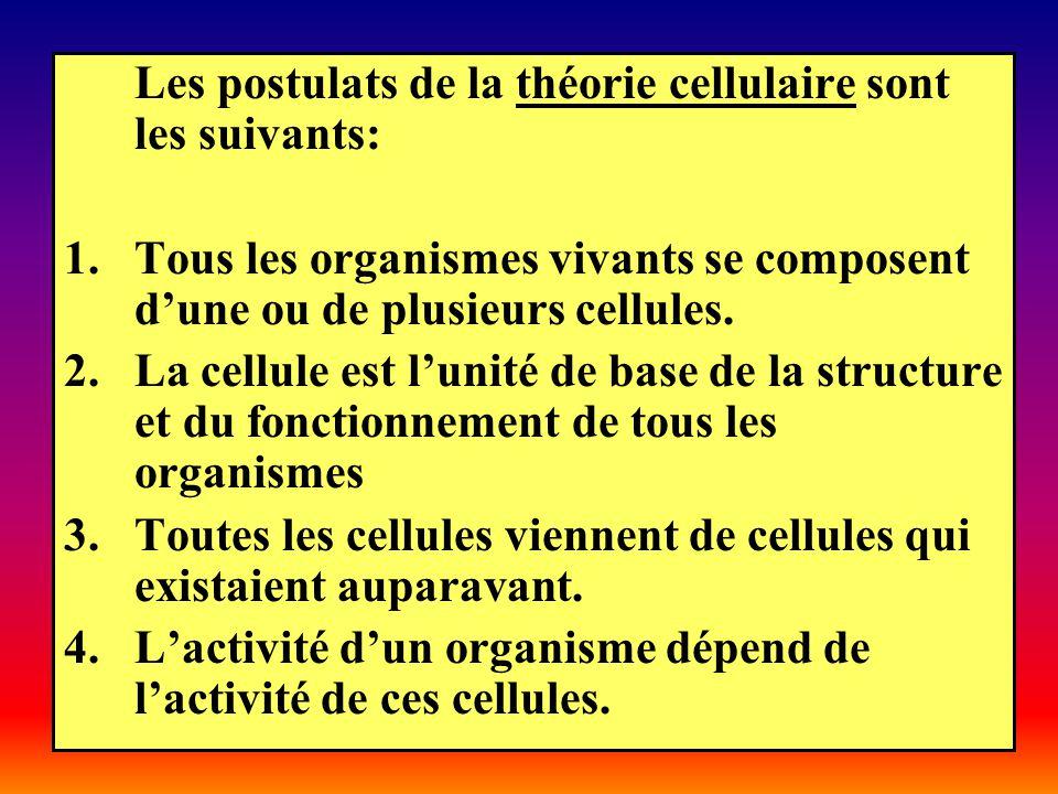 Les postulats de la théorie cellulaire sont les suivants: 1.Tous les organismes vivants se composent dune ou de plusieurs cellules. 2.La cellule est l