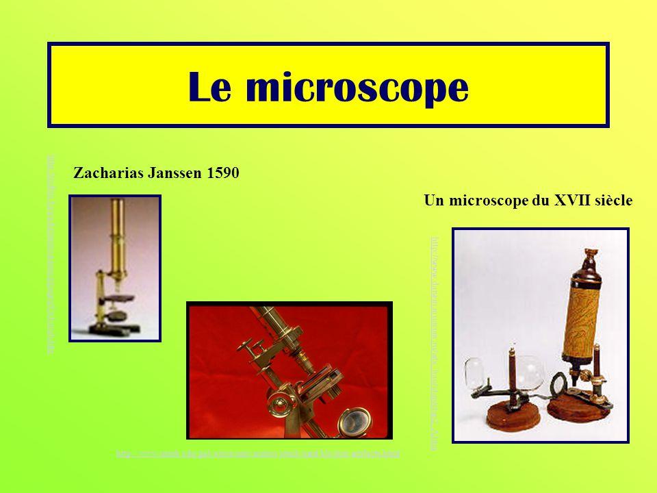 Le microscope http://www.darwin.museum.ru/site_bac/etap/etap2_A.htm Un microscope du XVII siècle Zacharias Janssen 1590 http://pdbio.byu.edu/neuroscie