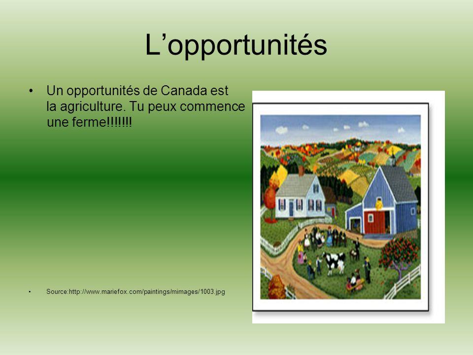 Lopportunités Un opportunités de Canada est la agriculture.