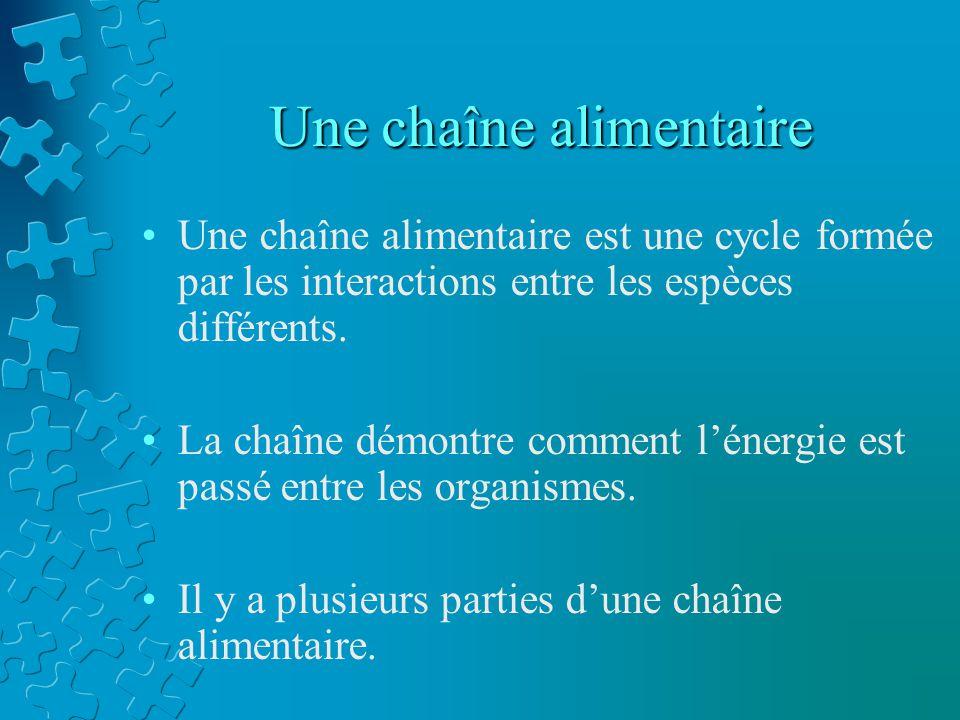 Une chaîne alimentaire Une chaîne alimentaire est une cycle formée par les interactions entre les espèces différents. La chaîne démontre comment léner