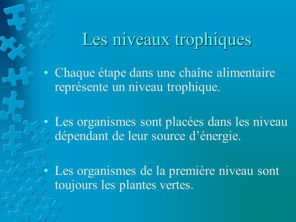 Les niveaux trophiques Chaque étape dans une chaîne alimentaire représente un niveau trophique. Les organismes sont placées dans les niveau dépendant