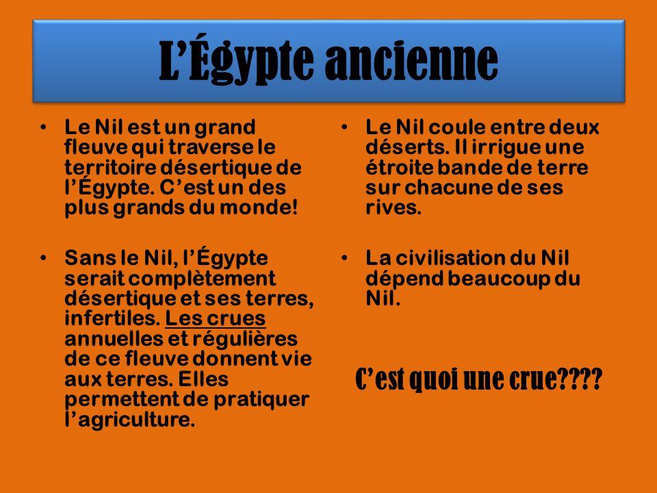 LÉgypte ancienne Le Nil est un grand fleuve qui traverse le territoire désertique de lÉgypte. Cest un des plus grands du monde! Sans le Nil, lÉgypte s