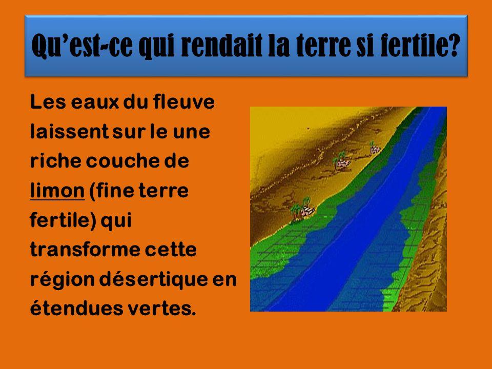 Quest-ce qui rendait la terre si fertile? Les eaux du fleuve laissent sur le une riche couche de limon (fine terre fertile) qui transforme cette régio