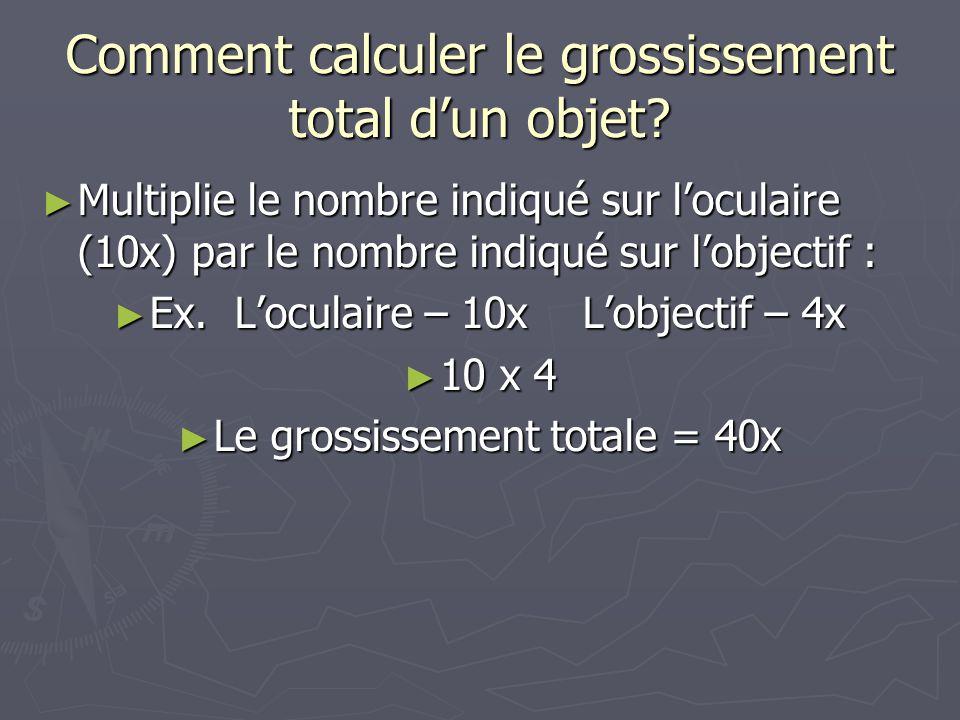 Comment calculer le grossissement total dun objet? Multiplie le nombre indiqué sur loculaire (10x) par le nombre indiqué sur lobjectif : Multiplie le