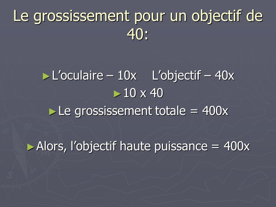 Le grossissement pour un objectif de 40: Loculaire – 10xLobjectif – 40x Loculaire – 10xLobjectif – 40x 10 x 40 10 x 40 Le grossissement totale = 400x