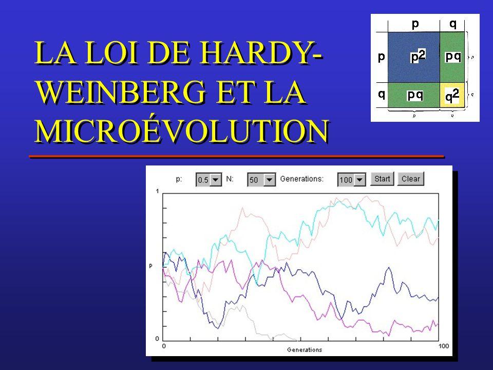 LA LOI DE HARDY- WEINBERG ET LA MICROÉVOLUTION