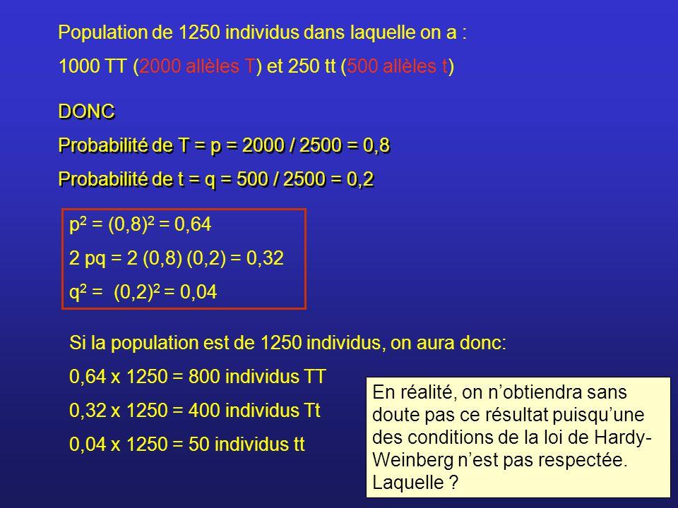 DONC Probabilité de T = p = 2000 / 2500 = 0,8 Probabilité de t = q = 500 / 2500 = 0,2 DONC Probabilité de T = p = 2000 / 2500 = 0,8 Probabilité de t =