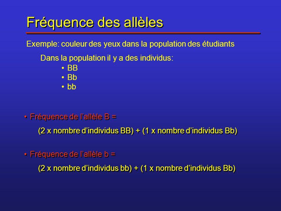 Fréquence des allèles Exemple: couleur des yeux dans la population des étudiants Dans la population il y a des individus: BB Bb bb Fréquence de lallèl