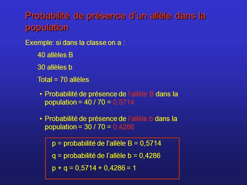Probabilité de présence dun allèle dans la population Exemple: si dans la classe on a : 40 allèles B 30 allèles b Total = 70 allèles Probabilité de pr