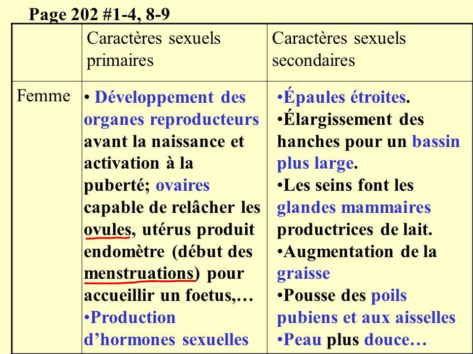 Caractères sexuels primaires Caractères sexuels secondaires Femme Page 202 #1-4, 8-9 Développement des organes reproducteurs avant la naissance et act