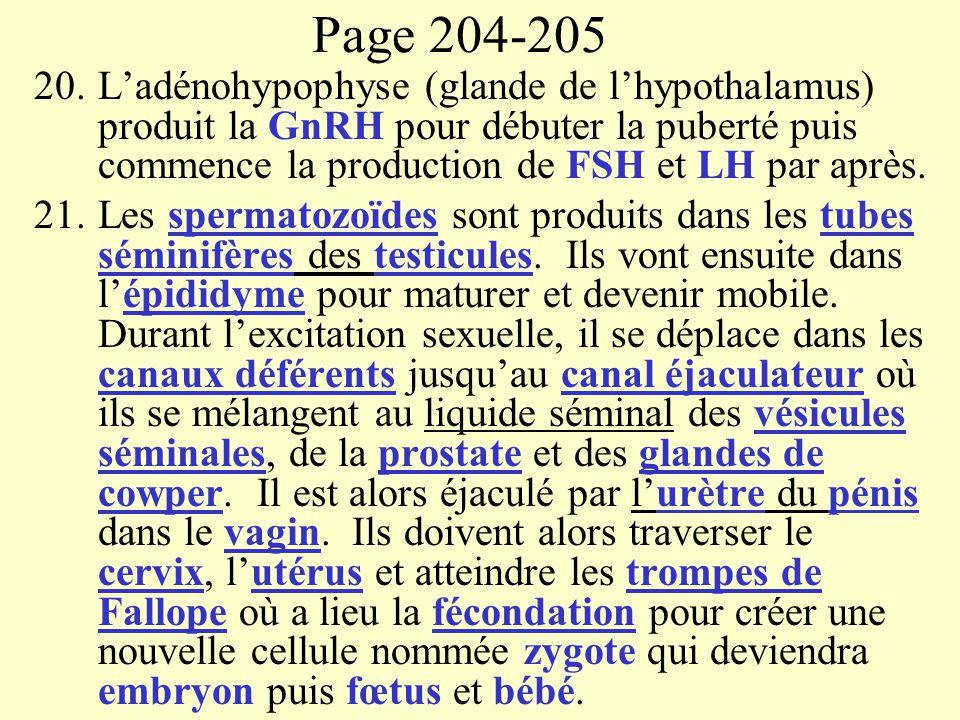 Page 204-205 20.Ladénohypophyse (glande de lhypothalamus) produit la GnRH pour débuter la puberté puis commence la production de FSH et LH par après.