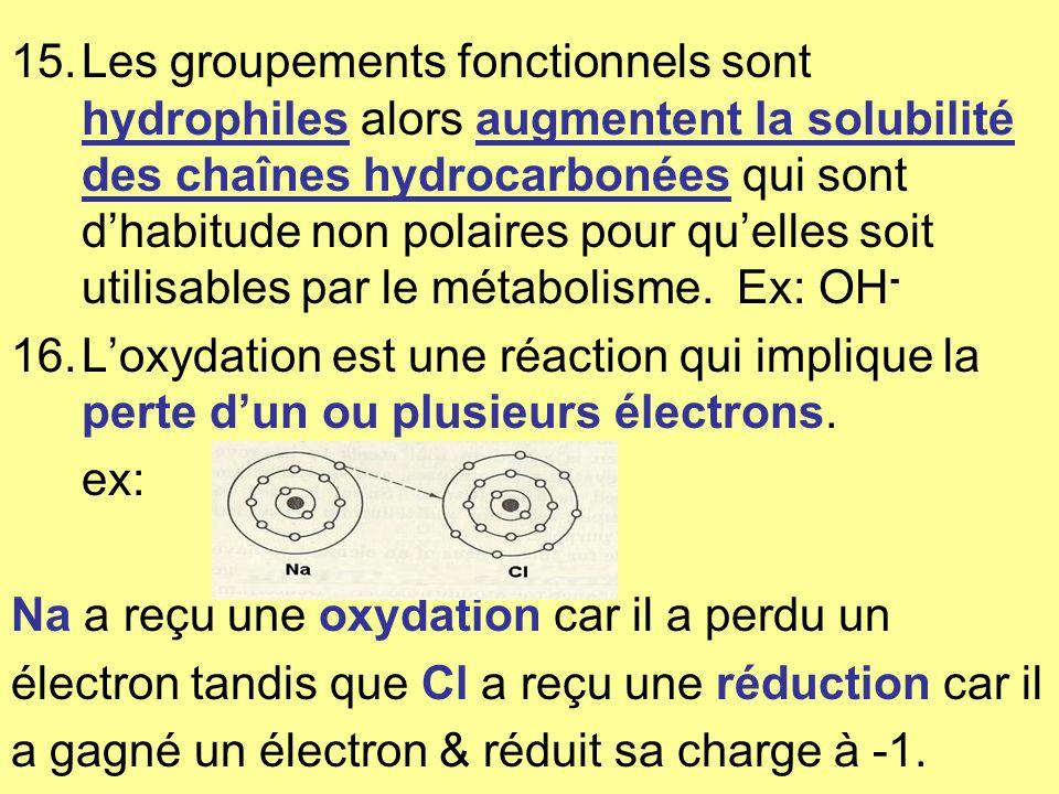 15.Les groupements fonctionnels sont hydrophiles alors augmentent la solubilité des chaînes hydrocarbonées qui sont dhabitude non polaires pour quelles soit utilisables par le métabolisme.