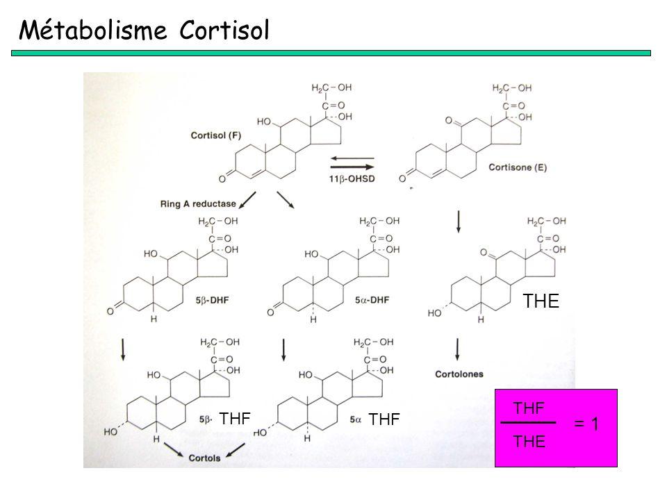 Métabolisme Cortisol THE THF THE = 1