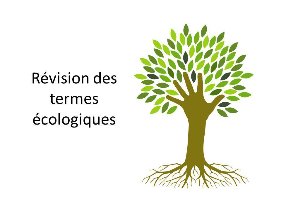Révision des termes écologiques