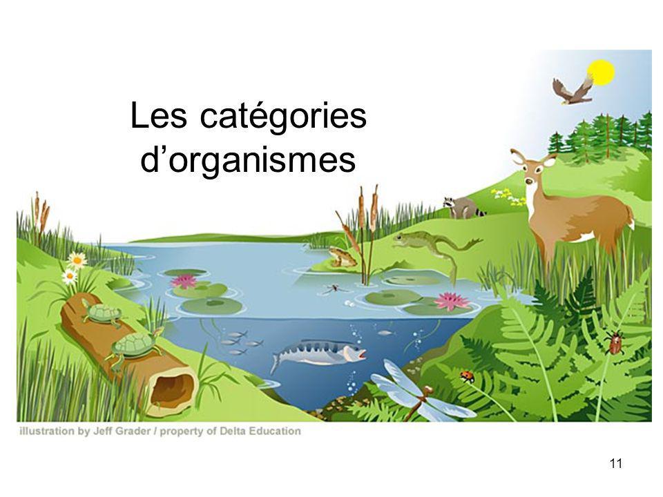 Les catégories dorganismes 11