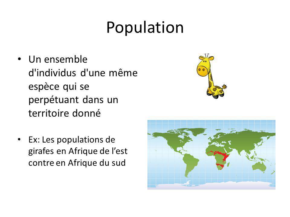 Population Un ensemble d individus d une même espèce qui se perpétuant dans un territoire donné Ex: Les populations de girafes en Afrique de lest contre en Afrique du sud